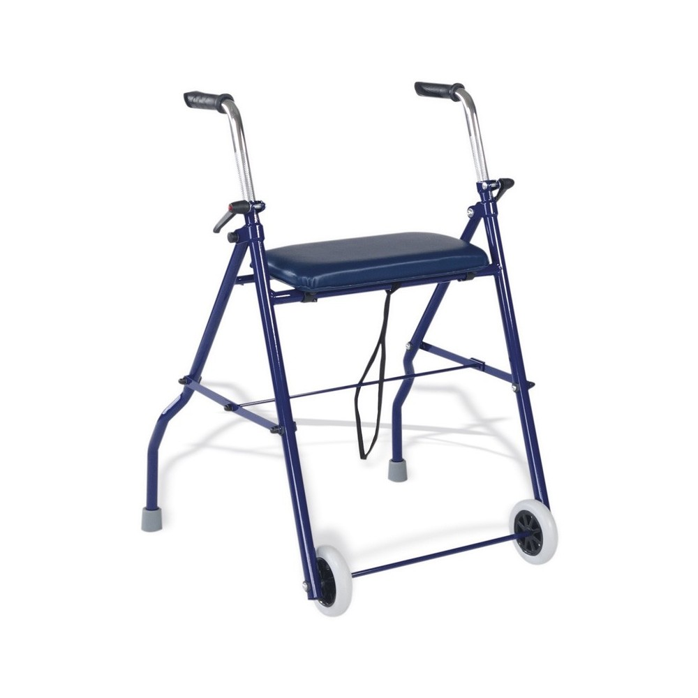 Walker with 2 Wheels and Seat